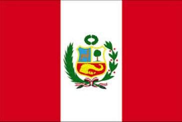 Perú: ¿Qué profesionales están cubiertos por el seguro complementario de trabajo de riesgo?