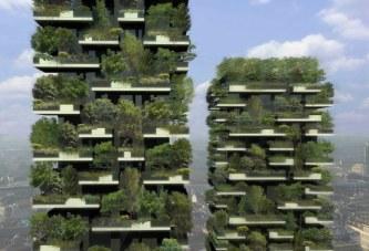 Bosques verticales: ¿La nueva solución para las ciudades?