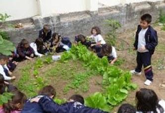 Introducción al Huerto Ecológico Escolar