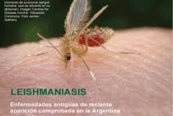 L – Leishmania Donovani Chagas