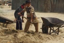 México: Trabajo infantil en zonas rurales expone a niños a plaguicidas