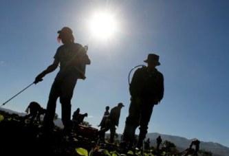 Cuidado de la salud de trabajadores expuestos a radiación UV solar