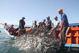 Peru: Gobierno busca cerrar brecha de pescadores artesanales sin protección