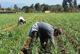 Chile: Accidentes de trabajo aumentan en un 12% en marzo y ACHS lanza campaña preventiva