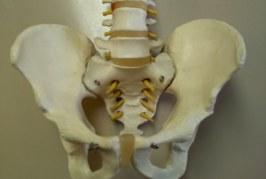 Los pacientes con espondilitis anquilosante ven perjudicado su desarrollo profesional