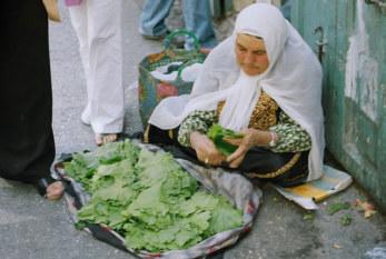 OIT pide medidas urgentes para proporcionar trabajo decente para los trabajadores palestinos