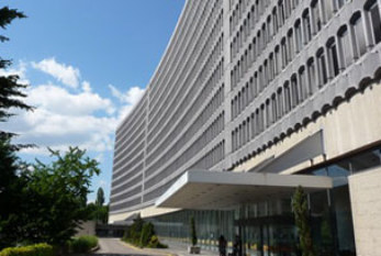 OIT establece una red de negocios mundial sobre trabajo forzoso y la trata de personas