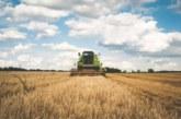 El sector agrario: principales riesgos y EPI