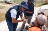 Chile: Lanzan campaña para proteger a los trabajadores de las altas temperaturas