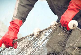 Entró en vigencia el convenio para mejorar las condiciones laborales del sector pesquero