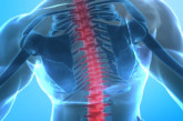 Se presenta en el Parlamento Europeo una guía de intervención temprana para mejorar el abordaje de los pacientes con enfermedades musculoesqueléticas y reducir la duración de sus bajas laborales